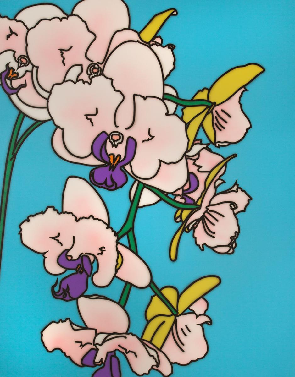 Peach And Purple Phalaenopsis Orchid